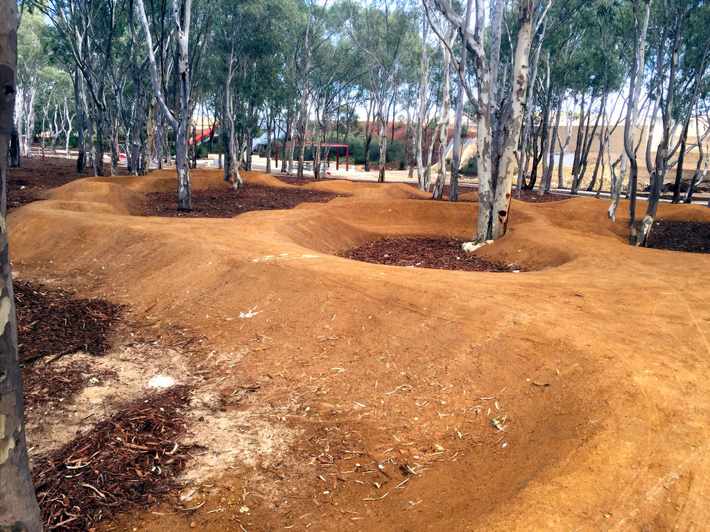 The trees are protected on this BMX track!